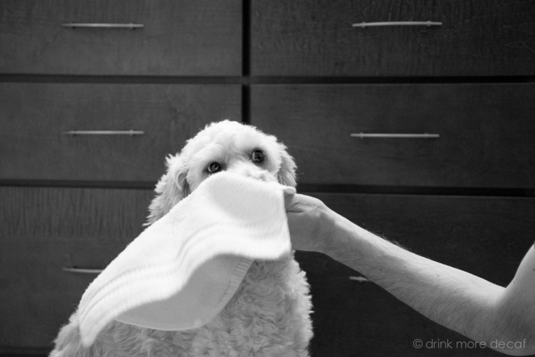 Wipe Your Face